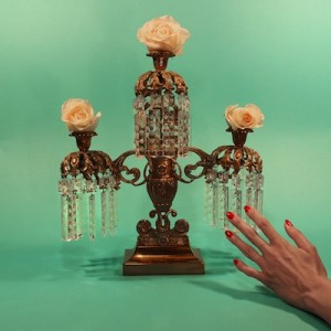 tropic of cancer-restless idylls